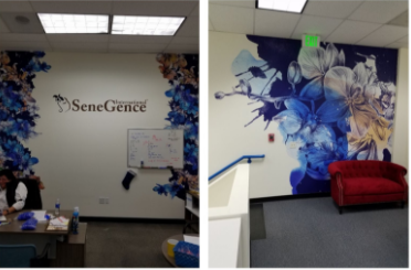 resfreshed office walls with vinyl wall art